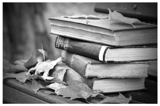autunno-foglie-e-libri-in-bianco-e-nero